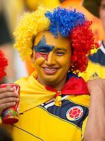 A Columbia fan in fancy dress and face paint