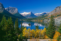 Aspens, Saint Mary Lake and Wild Goose Island<br />     from Going-to-the-Sun Highway<br /> Glacier National Park,  Lewis Range<br /> Rocky Mountains,  Montana