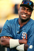 Tony Gwynn of the San Diego Padres at Dodger Stadium in Los Angeles,California during the 1996 season. (Larry Goren/Four Seam Images)
