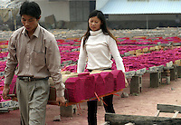 A husband and wife team carries bundles of dried incense at the Meizhengxiang Incense Factory near Xiamen, Fujian Province, China. As religous life increasingly becomes an important part of China, businesses related to religion such as Buddhism and Daoism have flourished. The factories have seen its sales quadruple since its establishment in 1996, reaching euro 5 million in 2003. The factory now employs over 200 workers, mostly migrants from Sichuan and Jiangxi Province..17-MAR-04