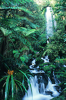 One of hundreds of waterfalls on Hollyford Track, Fiordland National Park, UNESCO World Heritage Area, Southland, New Zealand, NZ