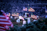 American Flags at a Navajo reservation cemetery. Arizona, Navajo Reservation.