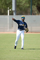 Milwaukee Brewers right fielder Larry Ernesto (24) throws in the outfield during an Instructional League game against the Los Angeles Dodgers at Maryvale Baseball Park on September 24, 2018 in Phoenix, Arizona. (Zachary Lucy/Four Seam Images)