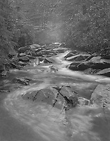 """""""Creek, Rocks and Mist"""" <br /> Great Smoky Mountains National Park, Tennessee <br /> <br /> This photograph shows a common scene in the Great Smoky Mountains National Park with water cascading downhill around rocks to produce mist. Camera tilt movements were needed to ensure that sharp focus extended through the entire scene. My choices were to tilt the lens forward or tilt the film backward. I tilted the film back since, unlike lens tilt, image perspective was changed at the same time focus was changed. That was advantageous for this photograph because it caused the large rock in the foreground to loom larger."""