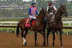 DEL MAR, CA. AUGUST 12:  #1 Run Away ridden by Flavien Prat, in the post parade of the Best Pal Stakes (Grade ll) on August 12, 2017, at Del Mar Thoroughbred Club in Del Mar, CA.(Photo by Casey Phillips/Eclipse Sportswire/Getty )