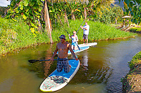 Two men and one woman standup paddleboarding on the Hanalei River, Kaua'i