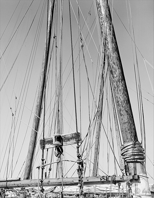 """""""Rigging"""" has been a popular choice from the Fine Art, Limited Edition """"Skipjack Sunday"""" collection. Once upon a time there were thousands of these creating a forest of masts in Skipjack harbors. Also available in sepia."""