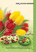 Isabella, EASTER, OSTERN, PASCUA, photos+++++,ITKE161453A-BSTRWS,#e# easter tulips