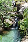 Natural pool (PIscene Naturelle) with surrounding Pandanus palms. Isalo National Park, Madagascar.