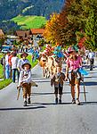 Oesterreich, Tirol, Westendorf (Tirol) im Brixental: Almabtrieb | Austria, Tyrol, Westendorf (Tyrol) at Brixental: return of livestock from high alpine summer pastures