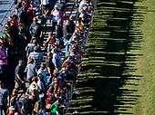 Fans, crowd, spectators