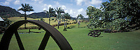 France/DOM/Martinique/Le François/Domaine de l'Acajou/Distillerie Clément: Habitation Clément, le jardin et l'arbre du voyageur