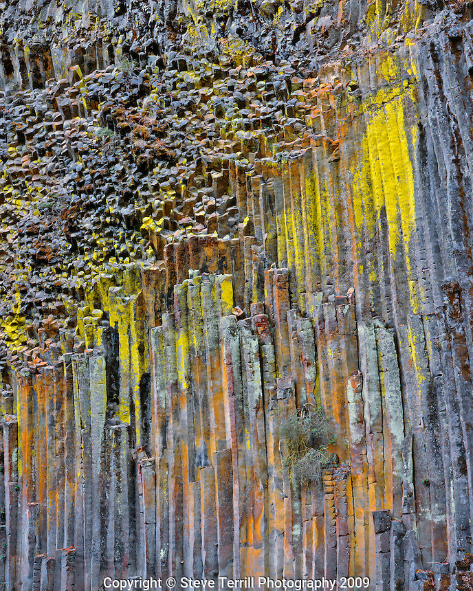 Columnar basalt covered with lichen along North Umpqua River in Douglas County Oregon