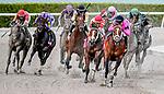 HALLANDALE, FLORIDA - MARCH 30: Maximum Security #7 (black cap), ridden by Luis Saez, wins the Florida Derby on Florida Derby Day at Gulfstream Park Race Track in Hallandale Beach, Florida. Scott Serio/Eclipse Sportswire/CSM