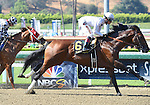 Majestic Harbor (no. 6), ridden by Tyler Baze and trained by Sean McCarthy, wins the grade 1 Gold Cup at Santa Anita Stakes for three year olds and upward on June 28, 2014 at Santa Anita Park in Arcadia, California. (Bob Mayberger/Eclipse Sportswire)