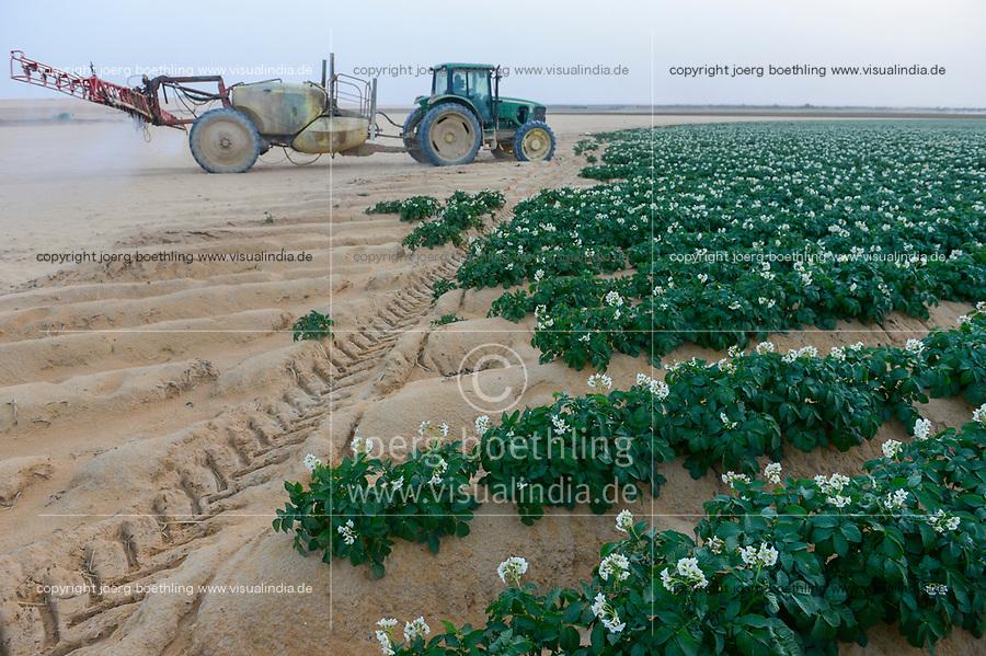 EGYPT, Farafra, potato farming in the desert, pesticide spraying at United Farms, the fossile groundwater from the Nubian Sandstone Aquifer is pumped from 1000 metres deep wells   / AEGYPTEN, Farafra, United Farms, Kartoffelanbau in der Wueste, Spruehen von Pestiziden, die kreisrunden Felder werden mit Pivot Kreisbewaesserungsanlagen mit fossilem Grundwasser des Nubischer Sandstein-Aquifer aus 1000 Meter tiefen Brunnen bewaessert