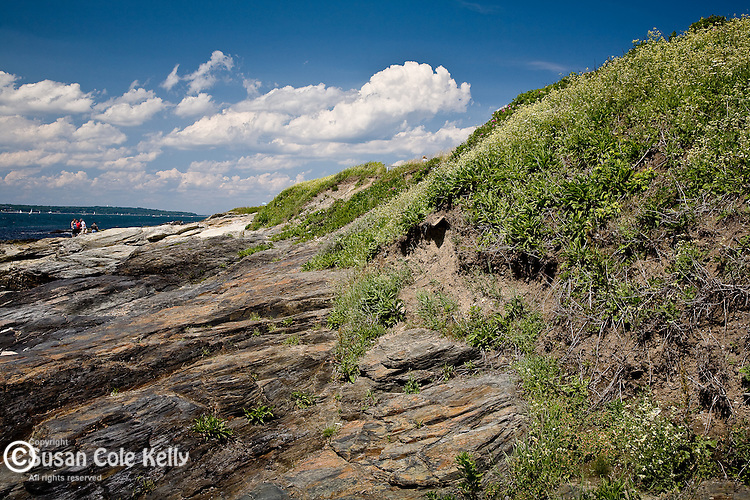 The rocky shore of Beavertail State Park, Jamestown, RI, USA