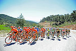 Race leader Davide Rebellin (ITA) and his CCC Sprandi Polkowice team on the front of the peloton during Stage 5 of the 2015 Presidential Tour of Turkey running 159.9km from Mugla to Pamukkale. 30th April 2015.<br /> Photo: Tour of Turkey/Mario Stiehl/www.newsfile.ie