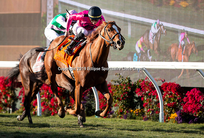 DEL MAR, CA: December 01: #7 Got Stormy wins the Grade I Matriarch Stakes at Del Mar Thoroughbred Club on December 01, 2019 in Del Mar, California (Photo by Chris Crestik/Eclipse Sportswire)
