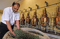 Europe/France/Auvergne/43/Haute-Loire/Le Puy-en-Velay : Dans la salle des alambics de la distillerie Pagès (verveine du Velay), RN88, Sortie Zl Blavozy  //   France, Haute Loire, Le Puy en Velay, RN88, exit Zl Blavozy, Pages Distillery, Velay verbena, pot stills [Non destiné à un usage publicitaire - Not intended for an advertising use]