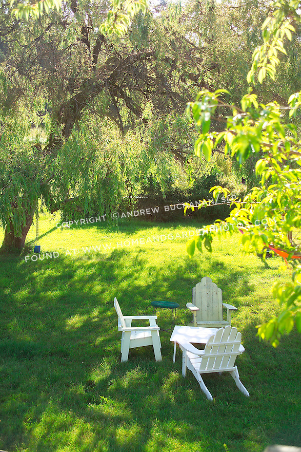 Three weathered, white-painted Adirondack chairs and a table sit in the shade of a spreading willow tree as morning sun spills into the meadow behind on a farm on Vashon Island, just across Puget Sound from Seattle, Washington. Garden design by Stenn Design