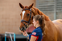 USA-Michael Hughes's Maya - S is presented for the Horse Inspection. 2021 ESP-Longines FEI Jumping Nations Cup Final. Real Club de Polo, Barcelona. Spain. Thursday 30 September 2021. Copyright Photo: Libby Law Photography