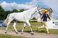 GBR-Jennifer Rowlinson presents Come Along Springtime during the First Horse Inspection for the CCI-L2* Section D.  2019 GBR-Saracen Horse Feeds Houghton International Horse Trial. Wednesday 22 May. Copyright Photo: Libby Law Photography
