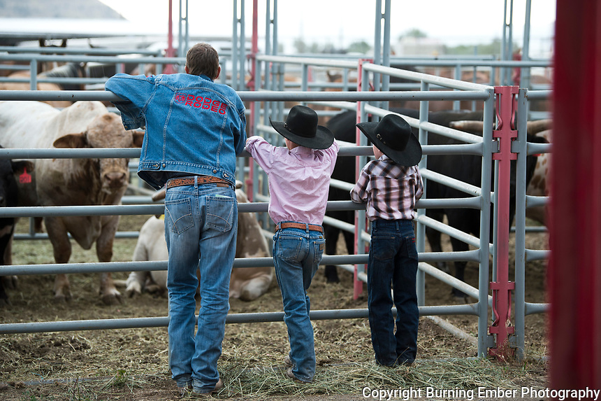 Dennis Halstead talks to the future talent at the Last Chance Stampede 2nd perf in Helena MT July 27th, 2018.  Photo by Josh Homer/Burning Ember Photography.  Photo credit must be given on all uses.