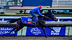 October 30, 2019: Breeders' Cup Filly & Mare Turf entrant Castle Lady, trained by Henri Alex Pantall, exercises in preparation for the Breeders' Cup World Championships at Santa Anita Park in Arcadia, California on October 30, 2019. Scott Serio/Eclipse Sportswire/Breeders' Cup/CSM