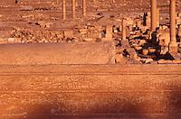 SIRIA - sito di Palmira(Tadmor)   iscrizioni