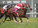 Suzzona, ridden by Julien Pimentel, wins the Turf Amazon Handicap at  Parx Racing in Bensalem, PA, on September 5, 2011. Owned by Sandy Valley Farms, trained by Benjamin Feliciano Jr. (Joan Fairman Kanes/Eclipsesportswire)