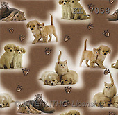 Interlitho, Kim, GIFT WRAPS, paintings, dogs, cats, brown fond(KL7058,#GP#) everyday