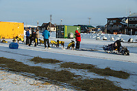 Mats Pettersson in the dog lot in Nome on Thursday March 19, 2015 during Iditarod 2015.  <br /> <br /> (C) Jeff Schultz/SchultzPhoto.com - ALL RIGHTS RESERVED<br />  DUPLICATION  PROHIBITED  WITHOUT  PERMISSION