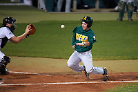 Siena Saints third baseman Jordan Folgers (12) slides home as catcher Austin Hale (18) waits for the throw during a game against the Stetson Hatters on February 23, 2016 at Melching Field at Conrad Park in DeLand, Florida.  Stetson defeated Siena 5-3.  (Mike Janes/Four Seam Images)