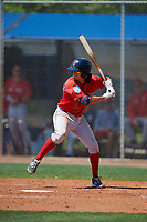 Boston Red Sox Ryan Fitzgerald (10) bats during a Minor League Spring Training game against the Tampa Bay Rays on March 25, 2019 at the Charlotte County Sports Complex in Port Charlotte, Florida.  (Mike Janes/Four Seam Images)