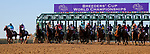 November 7, 2020 : Horses break out of the starting gate during the Sprint on Breeders' Cup Championship Saturday at Keeneland Race Course in Lexington, Kentucky on November 7, 2020. Matt Wooley/Eclipse Sportswire/Breeders' Cup/CSM