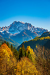 Italien, Venetien, Dolomiten, bei Pieve - Hauptort der Gemeinde Livinallongo del Col di Lana (Buchenstein) Herbstlandschaft vor der Civetta | Italy, Veneto, Dolomites, near Pieve - main town of comunity Livinallongo del Col di Lana (Buchenstein): autumn scenery with summit La Civetta