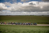 peloton speeding along at +50km/h in the 1hr of racing in what might just be the flattest race of the season<br /> <br /> 109th Scheldeprijs 2021 (ME/1.Pro)<br /> 1 day race from Terneuzen (NED) to Schoten (BEL): 194km<br /> <br /> ©kramon