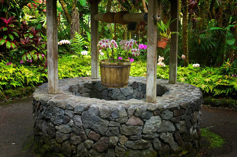 Wishing well. Hawaii Tropical Botanical Gardens. Hawaii, The Big Island.