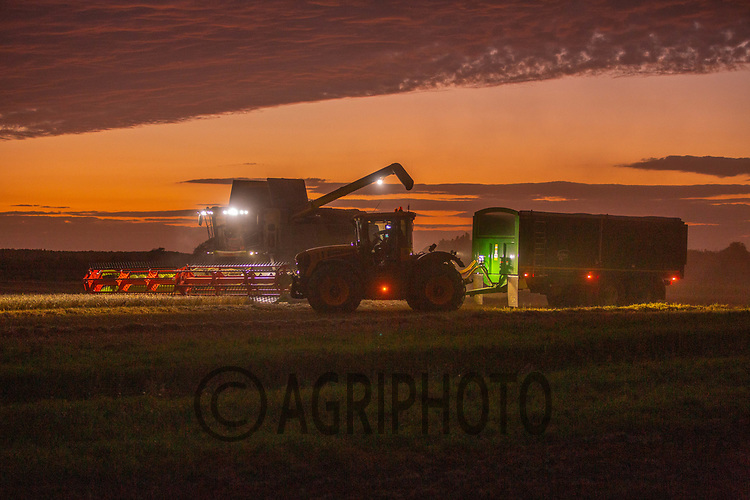 4.9.2020 Harvesting at night in Lincolnshire ©Tim Scrivener Photographer 07850 303986<br />      ....Covering Agriculture In The UK.