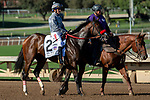 ARCADIA, CA. SEPTEMEBER 29:  #2 Del Mar May, ridden by Gary Stevens, in the post parade of the Chandelier Stakes (Grade l) on September 29, 2018, at Santa Anita Park in Arcadia, CA. (Photo by Casey Phillips/Eclipse Sportswire/CSM)