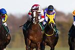 FUCHU,JAPAN-FEBRUARY 12: Suave Richard #1,ridden by Hirofumi Shii (white cap),wins the Kyodo News Service Hai at Tokyo Racecourse on February 12,2017 in Fuchu,Tokyo,Japan (Photo by Kaz Ishida/Eclipse Sportswire/Getty Images)