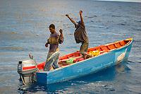 mahi mahi or dolphin fish, or dorado, Coryphaena hippurus, caught by local fishermen, Dominica, Caribbean, Atlantic