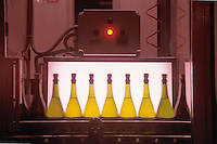 - wine production at Araldica wine cellars in Castel Boglione (Asti)....- produzione vinicola presso le cantine Araldica di Castel Boglione (Asti)