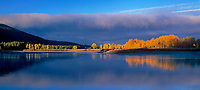 937000001 panoramic view -  a low lying cloud bank shrouds mount moran and the teton range with fall colored aspens lining the shore of the snake river at oxbow bend in grand tetons national park wyoming