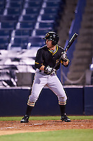 Bradenton Marauders right fielder Jeff Roy (2) squares to bunt during a game against the Tampa Yankees on April 11, 2016 at George M. Steinbrenner Field in Tampa, Florida.  Tampa defeated Bradenton 5-2.  (Mike Janes/Four Seam Images)