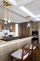 Contemporary open plan kitchen