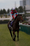 Earnestly wins the Takarazuka Kinen, Japan's Breeders Cup Challenge race, in record time on June 26, 2011