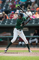 Great Lakes Loons third baseman Oneil Cruz (35) at bat against the Bowling Green Hot Rods during the Midwest League baseball game on June 4, 2017 at Dow Diamond in Midland, Michigan. Great Lakes defeated Bowling Green 11-0. (Andrew Woolley/Four Seam Images)