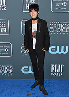 SANTA MONICA, USA. January 12, 2020: Diane Warren at the 25th Annual Critics' Choice Awards at the Barker Hangar, Santa Monica.<br /> Picture: Paul Smith/Featureflash